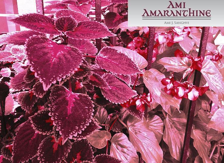 Amaranthine leaves